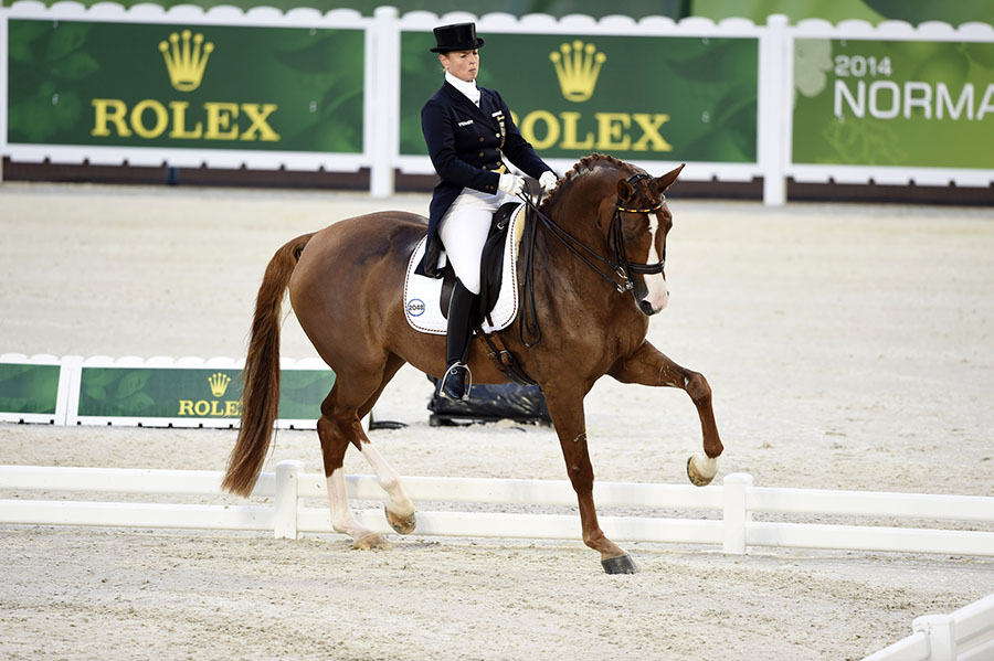 , Rolex and Equestrian, An Enduring Legacy, Saubio Making Wealth