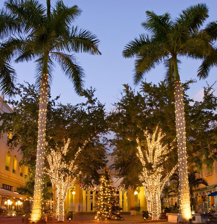 , 3 Reasons to Go Away this Christmas, Saubio Making Wealth