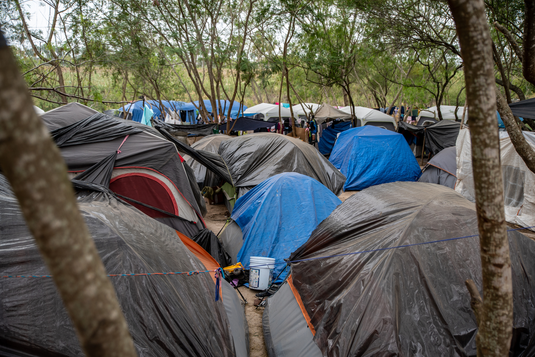 , Desperate Migrants Stuck in Tent Cities on the U.S.-Mexico Border Have One Last Hope: The Supreme Court, Saubio Making Wealth