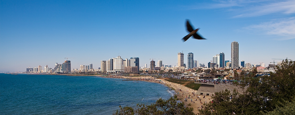 , Shalom Tel Aviv! Plan The Perfect Holiday Destination, Saubio Making Wealth