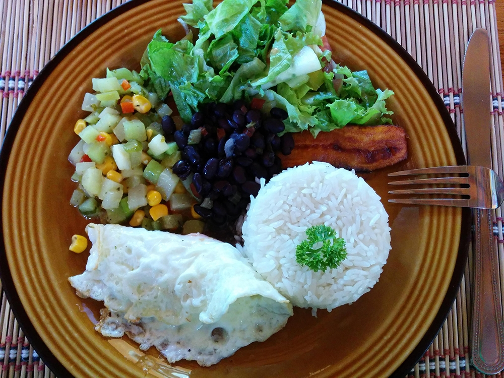 , The Ultimate Guide To Costa Rican Cuisine: Popular Dishes You Have To Try, Saubio Making Wealth