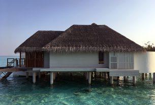 , The Top Best 4 Wooden Garden Summer House Care, Saubio Making Wealth