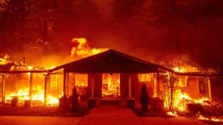 , California utility PG&E pleads guilty to 84 wildfire deaths, Saubio Making Wealth