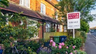 , Coronavirus: Want to sell a home? Make the garden look nice, Saubio Making Wealth