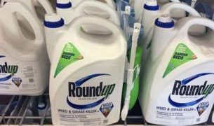 , Roundup: Bayer to pay $10.9bn to settle weedkiller cancer claims, Saubio Making Wealth