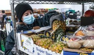 , Amazon takes on supermarkets with free food delivery, Saubio Making Wealth