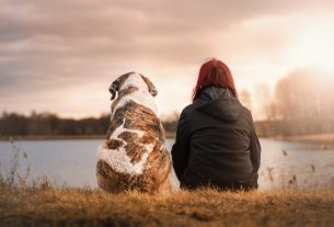 , Taking Care of Your Pets: The Proper Way, Saubio Making Wealth