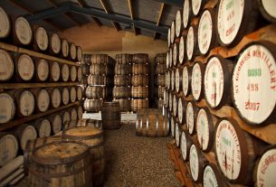 , St George's Distillery is England's Oldest Whiskey Distillery, Saubio Making Wealth