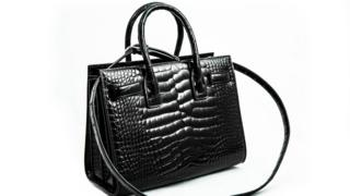 , £14k alligator bag destroyed over missing import permit, Saubio Making Wealth