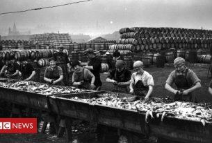 , Lowestoft fishing industry 'needs new apprenticeships to grow', Saubio Making Wealth