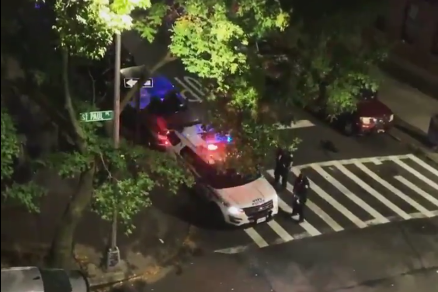 , NYPD Cop Caught Saying 'Trump 2020!' on Squad Car's Loudspeaker Suspended Without Pay, Saubio Making Wealth