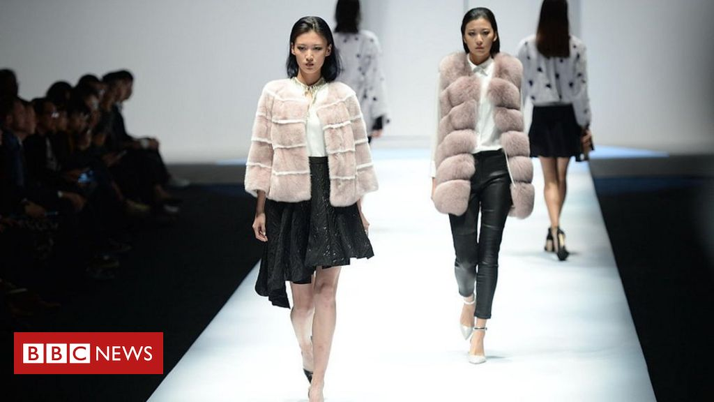 , Fur industry faces uncertain future due to Covid, Saubio Making Wealth
