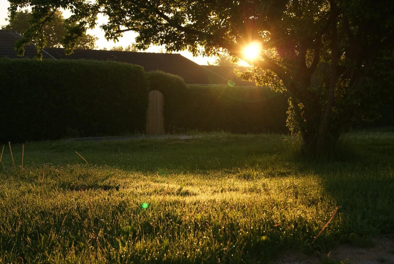 , 5 Backyard Additions You Will Love, Saubio Making Wealth