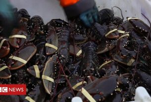 , Shell shocked: 'Lobster capital' braces for Brexit, Saubio Making Wealth