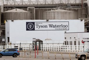 , Tyson Manager Who Bet on Which Workers Would Get COVID Says It Was Just 'Something Fun', Saubio Making Wealth