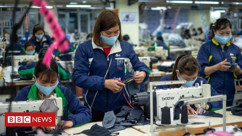 , Covid vaccine hopes lift IMF's global growth forecast, Saubio Making Wealth