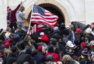 , Neo-Nazis Boast About Participation In Capitol Hill Invasion, Saubio Making Wealth