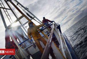 , Scottish fishermen 'sailing to Denmark to land catch', Saubio Making Wealth