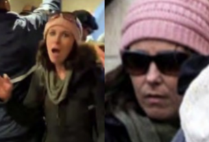 , Alleged Mommy Capitol Rioter 'Pink Hat Lady' Has Been Arrested by the FBI, Saubio Making Wealth