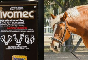 , Ivermectin Is a Fake COVID Treatment That's Typically Used on Horses, Saubio Making Wealth