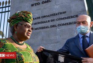 , Ngozi Okonjo-Iweala makes history at WTO, Saubio Making Wealth
