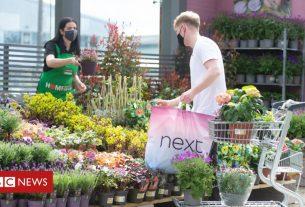 , Homebase to put mini-garden centres at Next stores, Saubio Making Wealth