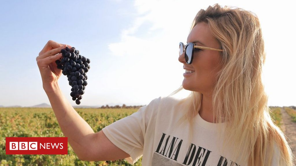 , 'I have put everything into my winery', Saubio Making Wealth