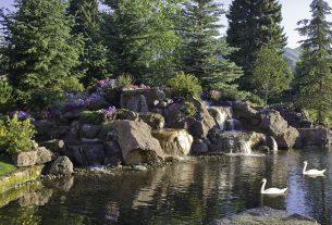, Sun Valley Lodge – A Timeless Destination, Saubio Making Wealth