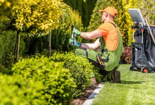 , What Time Of The Year Is Perfect For Hiring Landscapers, Saubio Making Wealth