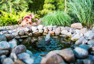 , Tips To Transform Your Yard Into a Luxurious Paradise, Saubio Making Wealth
