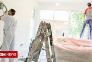 , Photographer, farmer and plasterer job ads rise, Saubio Making Wealth