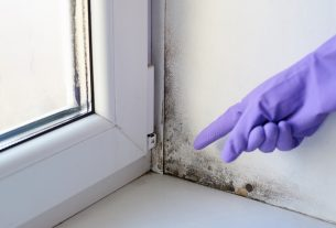 , The Clear Signs That Indicate The Need Of A Damp Treatment, Saubio Making Wealth
